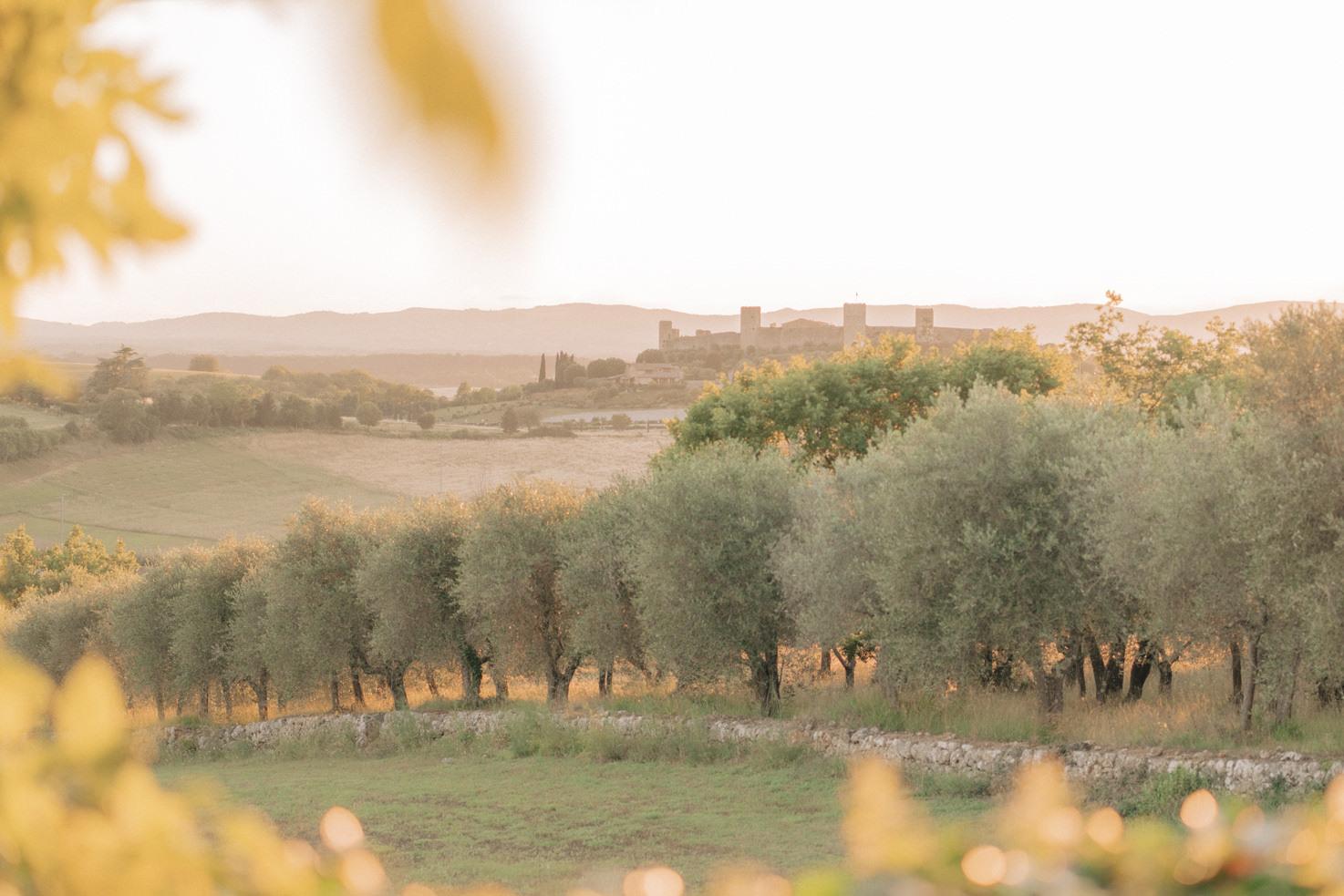 Panorama of Monteriggioni near Siena