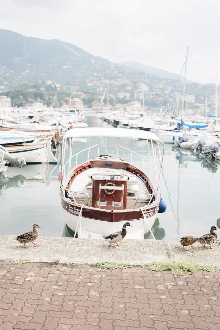 A boat on the shore of the Riviera