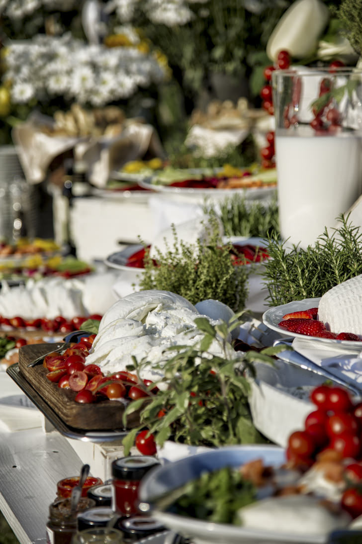 Fresh mozzarella and other appetizers