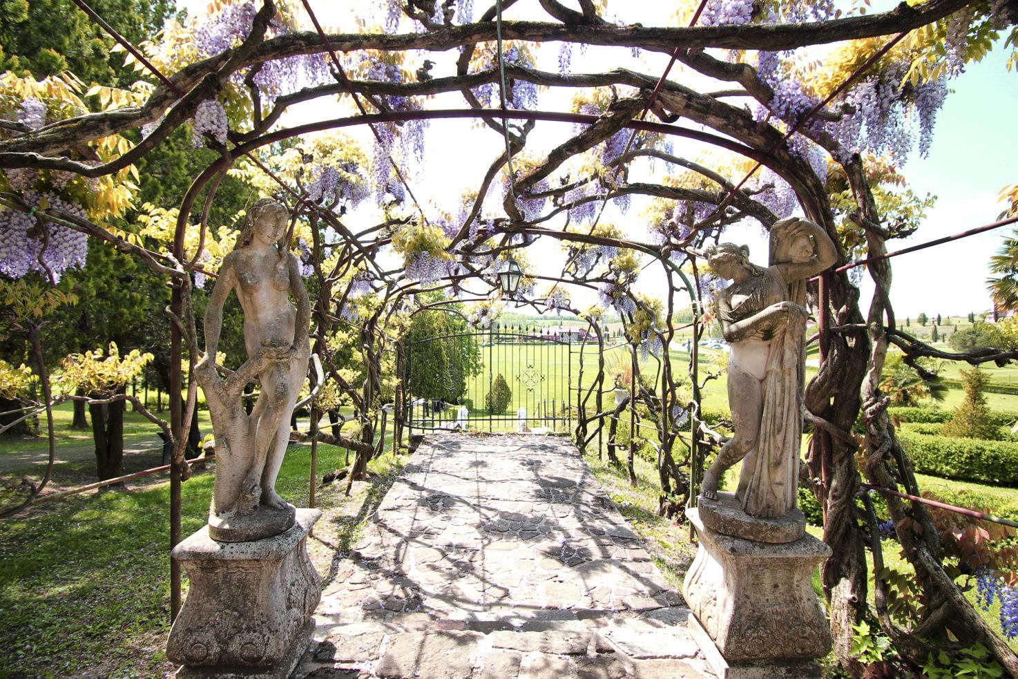 Wisteria path in the gardens