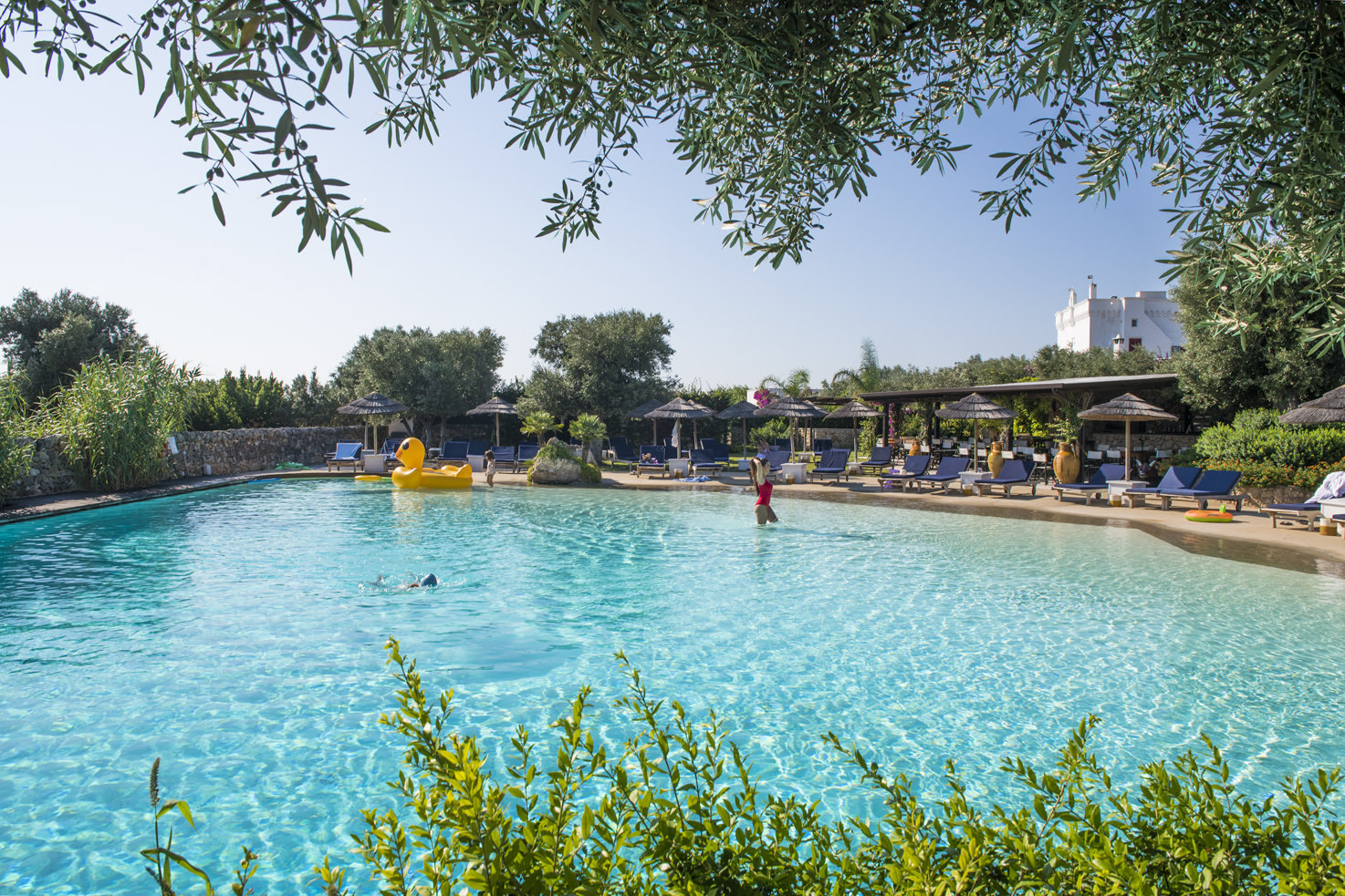 Pool at Masseria Torre Coccaro