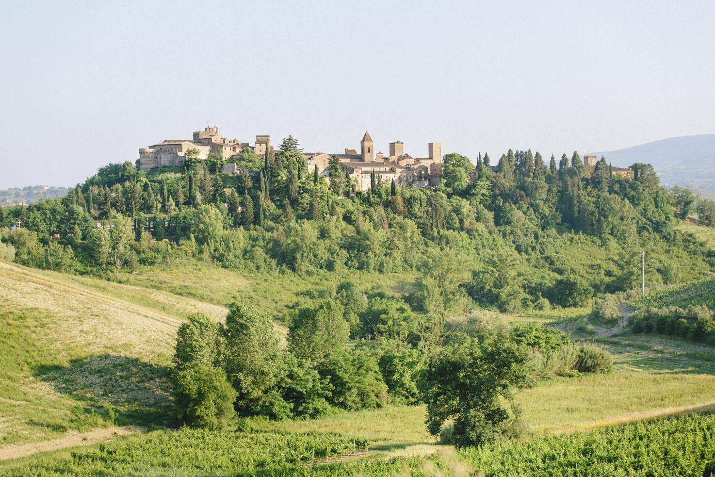 Panorama of Certaldo