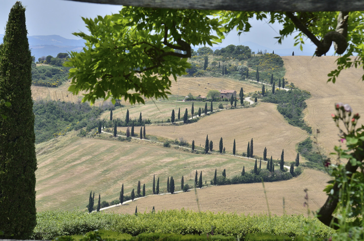 Panorama with view over the Tuscan hills