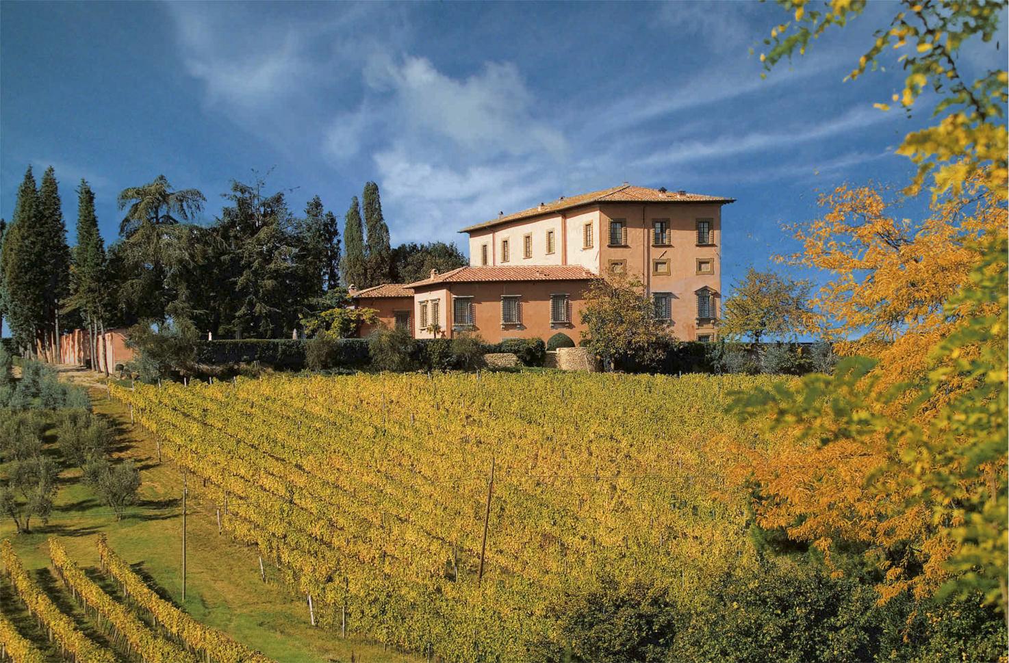 Vineyards surrounding Villa Mangiacane