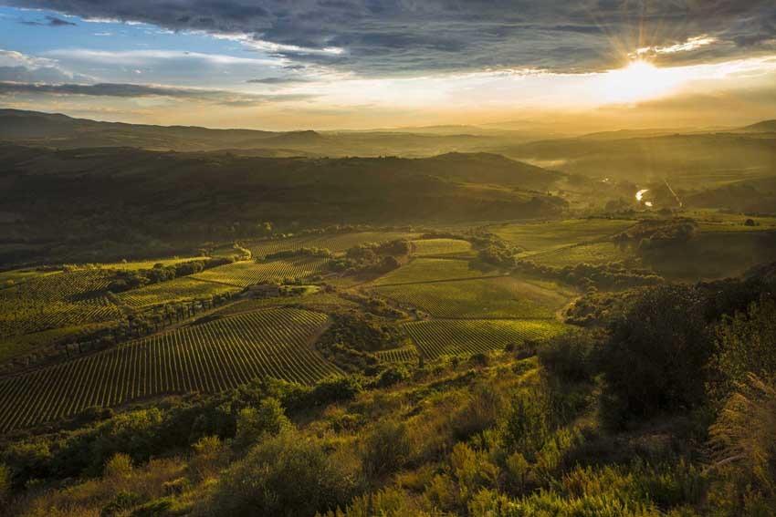 Countryside near Castello di Velona in Tuscany