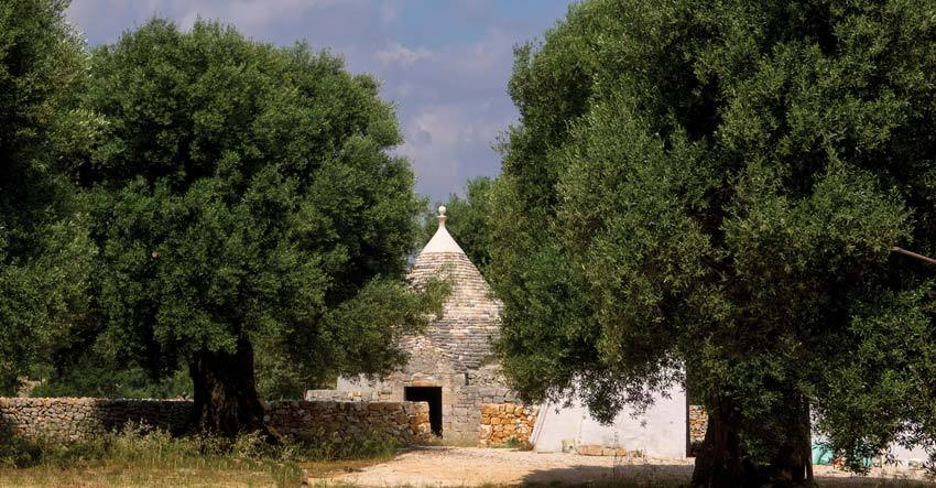 Countryside of Puglia region for weddings in Italy