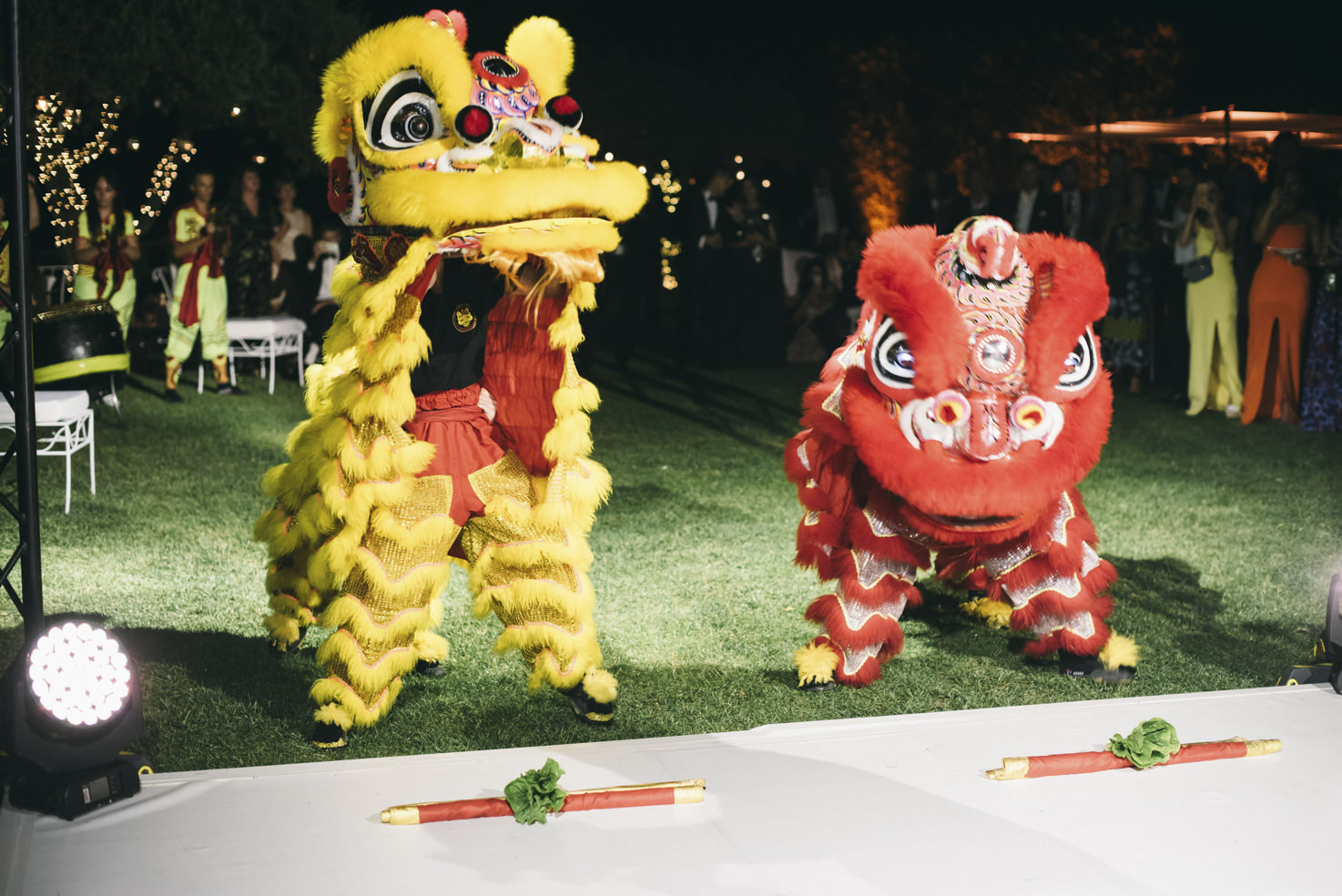 Chinese Lions show