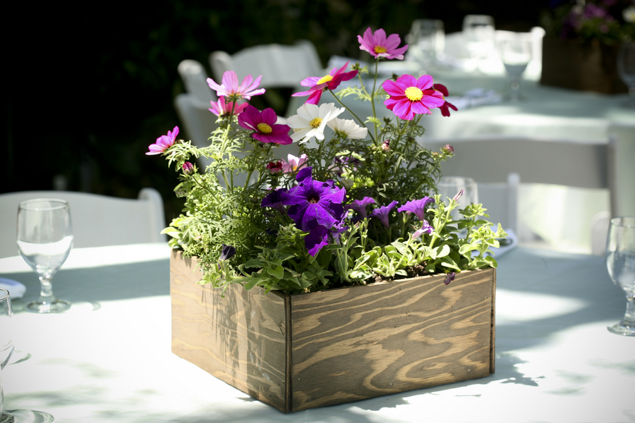ecofriendlyweddingcenterpieceswoodenbox texas wedding